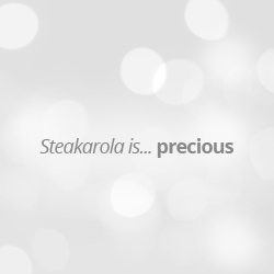 STEAKAROLA | Classic Model | 450mm